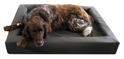 Lounge Dog Bed M