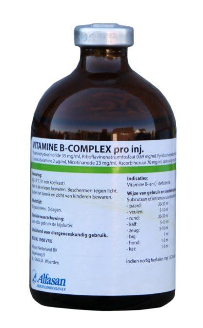 Vitamine B-complex Pro Inj. REG NL Vrij