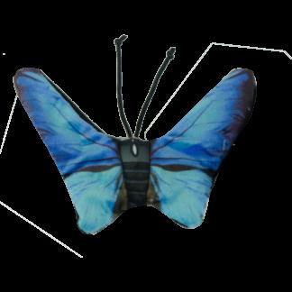 Wild Life Cat Blue Butterfly (Blauwe Vlinder)