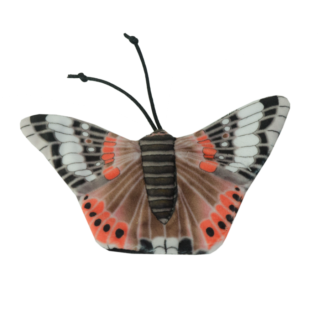 Wild Life Cat Red Admiral Butterfly (Admiraalvlinder)
